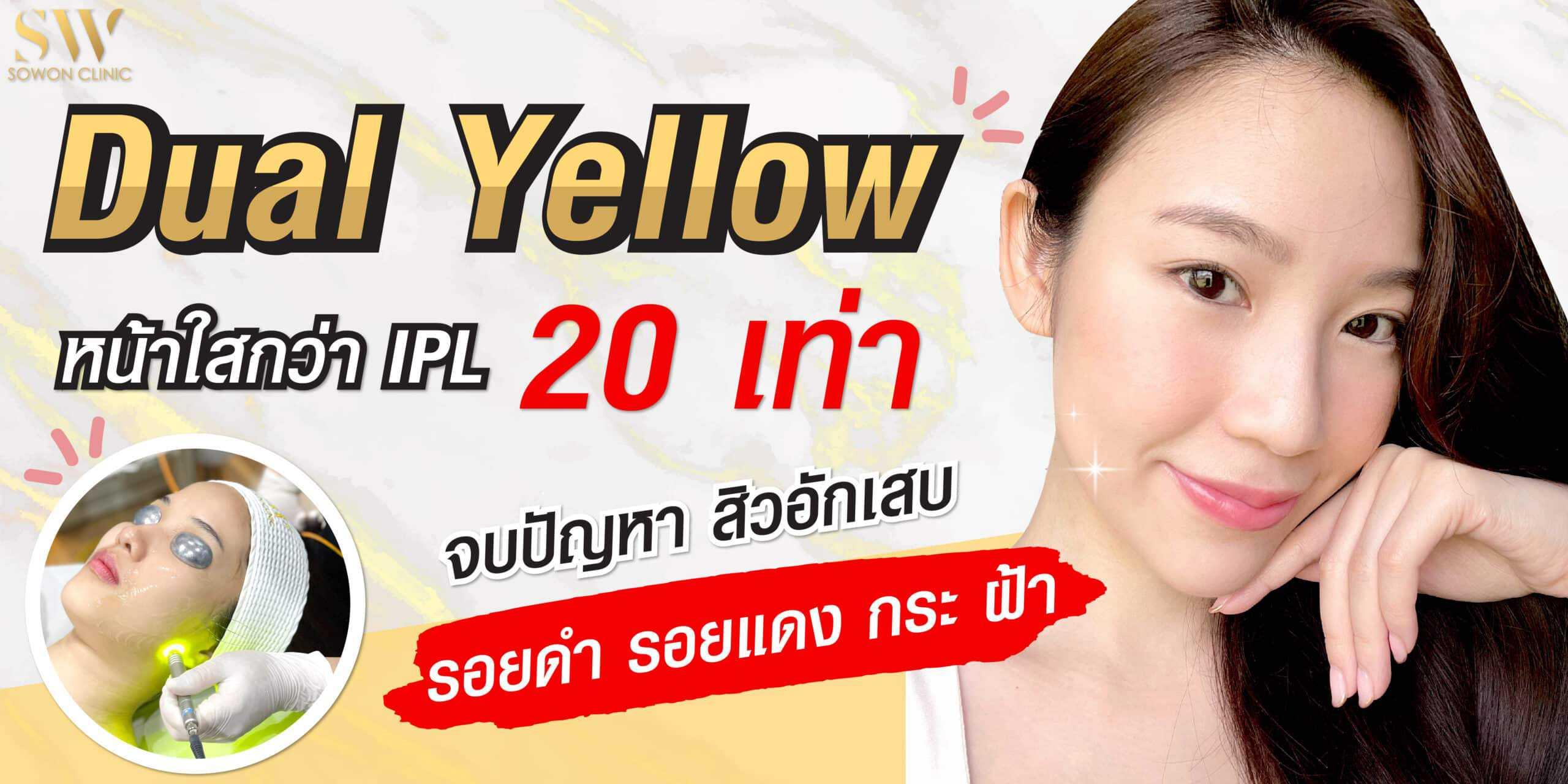 บริการของเรา dual yellow