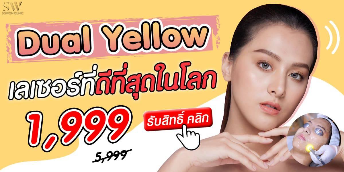 โปรdual yellow8